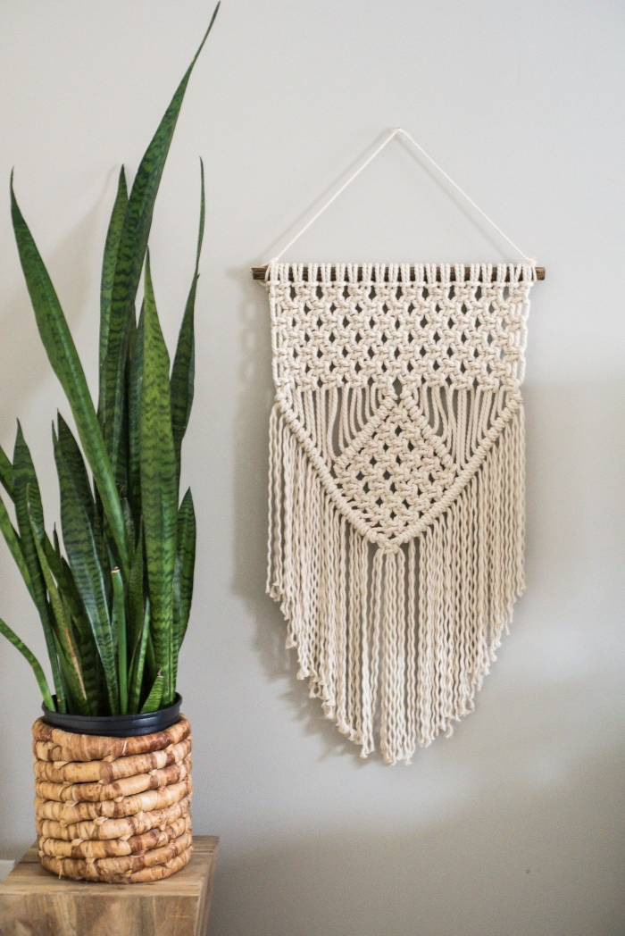 potted plant, wooden table, white wall, macrame hanging