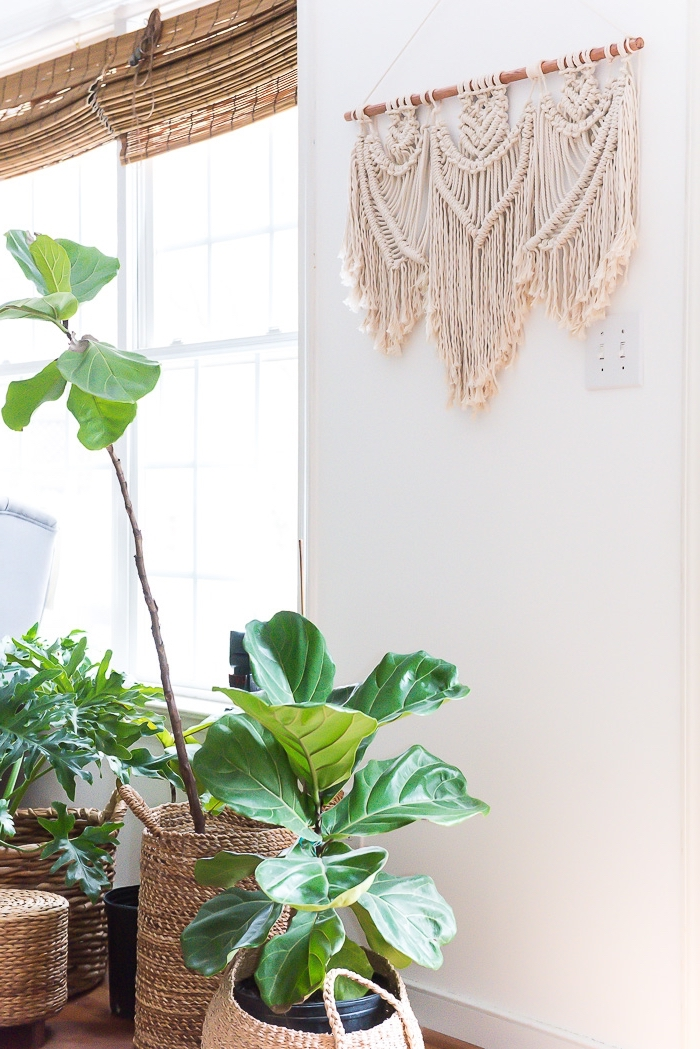 large windows, white wall, macrame for beginners, potted plants