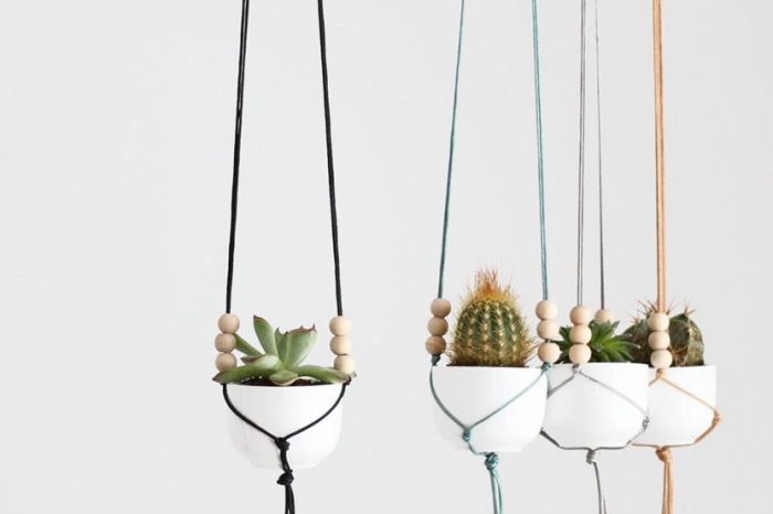 potted succulents and cactuses, macrame for beginners, black and blue, plant hanger, white wall