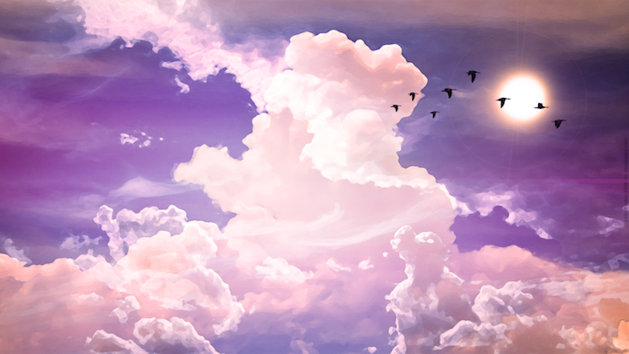 tumblr wallpaper, birds flying, pink clouds, purple skies