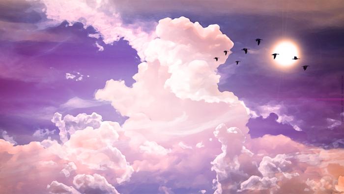 tumblr wallpaper, birds flying, pink clouds, purple skies