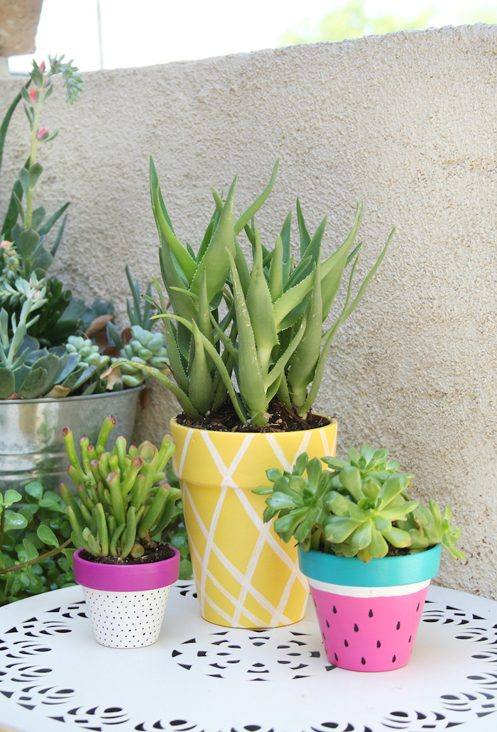 ceramic pots, painted as watermelon and pineapple, diys for kids, aloe vera and succulents