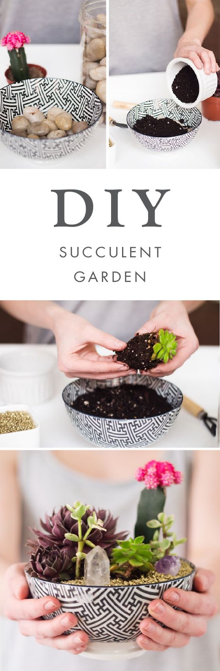 diy succulent garden, cool diy projects, ceramic bowl, filled with rocks and dirt