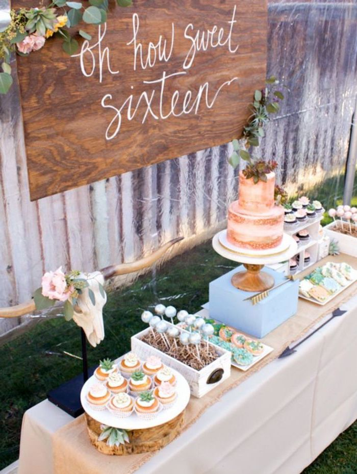 oh how sweet sixteen, two tier cake, rustic decor, birthday party ideas for boys, cake pops and cookies