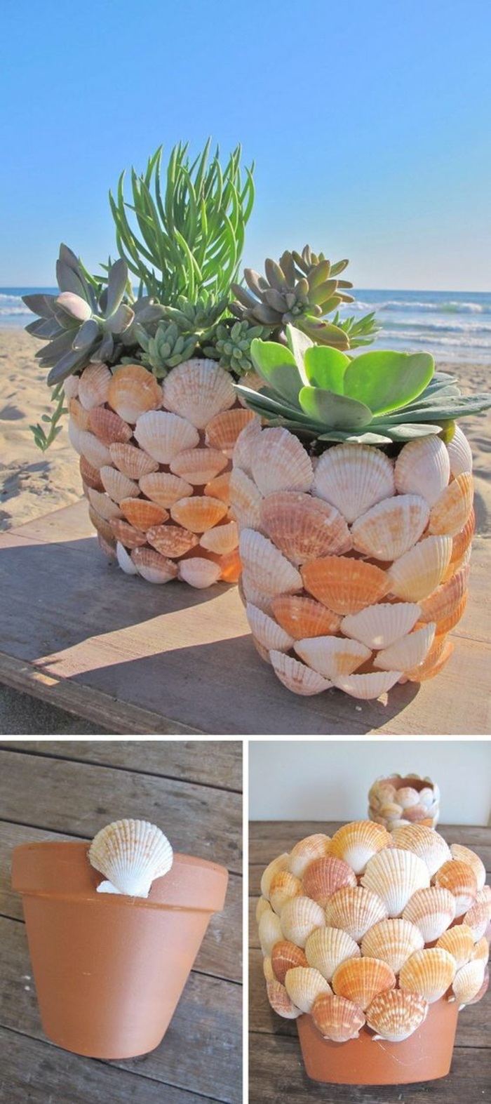 fun easy crafts, ceramic pot, covered in seashells, potted succulents, wooden table