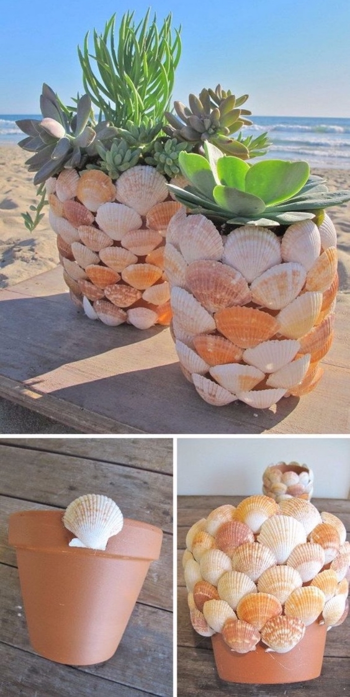 potted succulents, diy things to do when bored, ceramic pot, covered in seashells