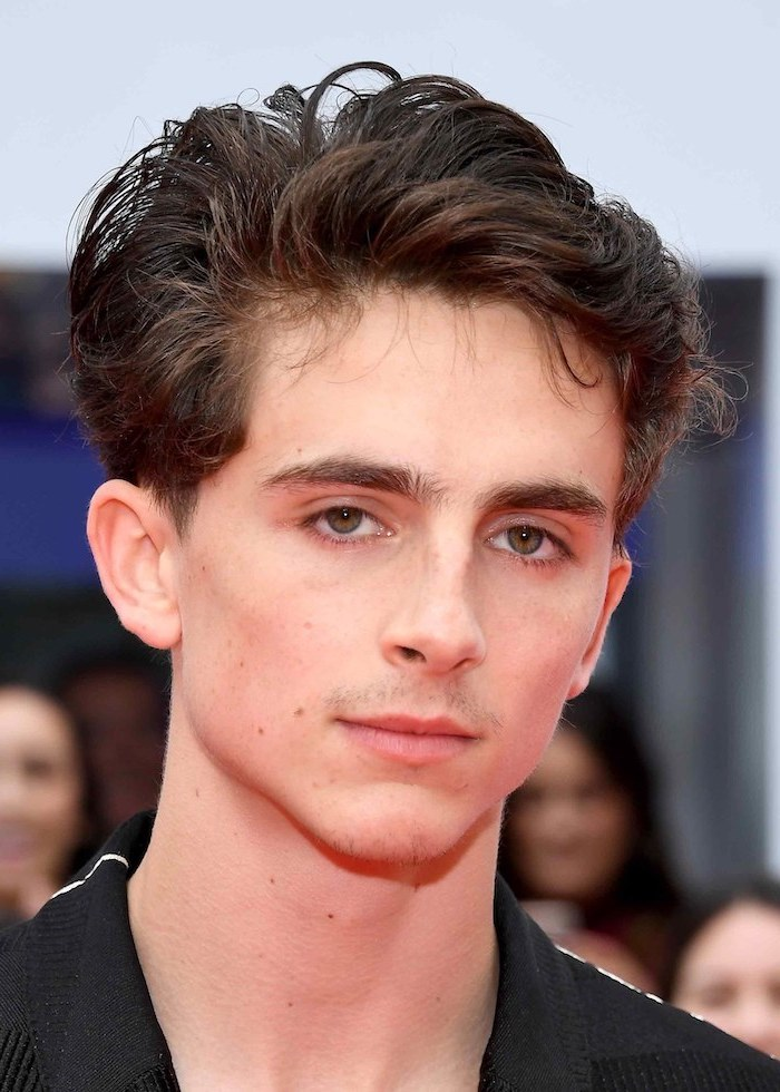 timothee chalamet, toddler boy haircut, brown hair, black shirt