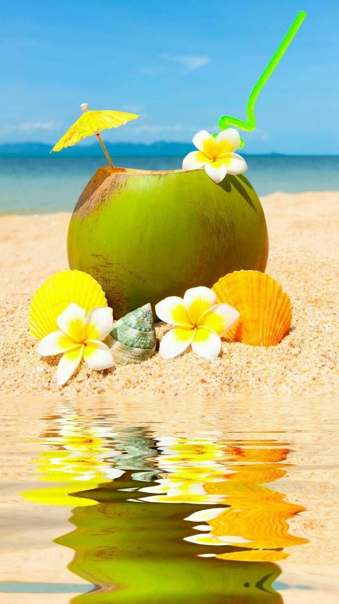 girly wallpapers, coconut, with a cocktail straw, paper umbrella, white flowers, seashells in the sand