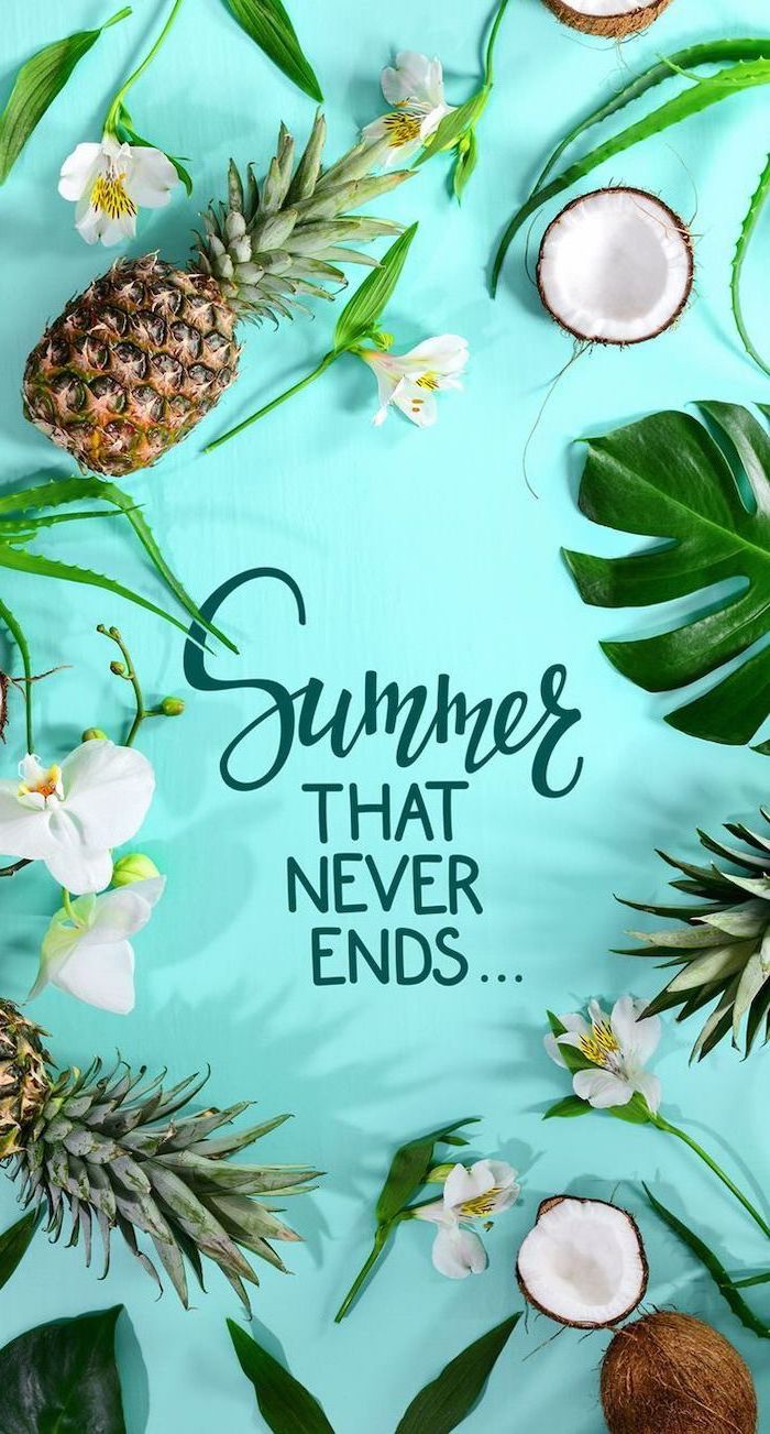 turquoise background, pineapples and coconuts, white flowers, cute wallpapers