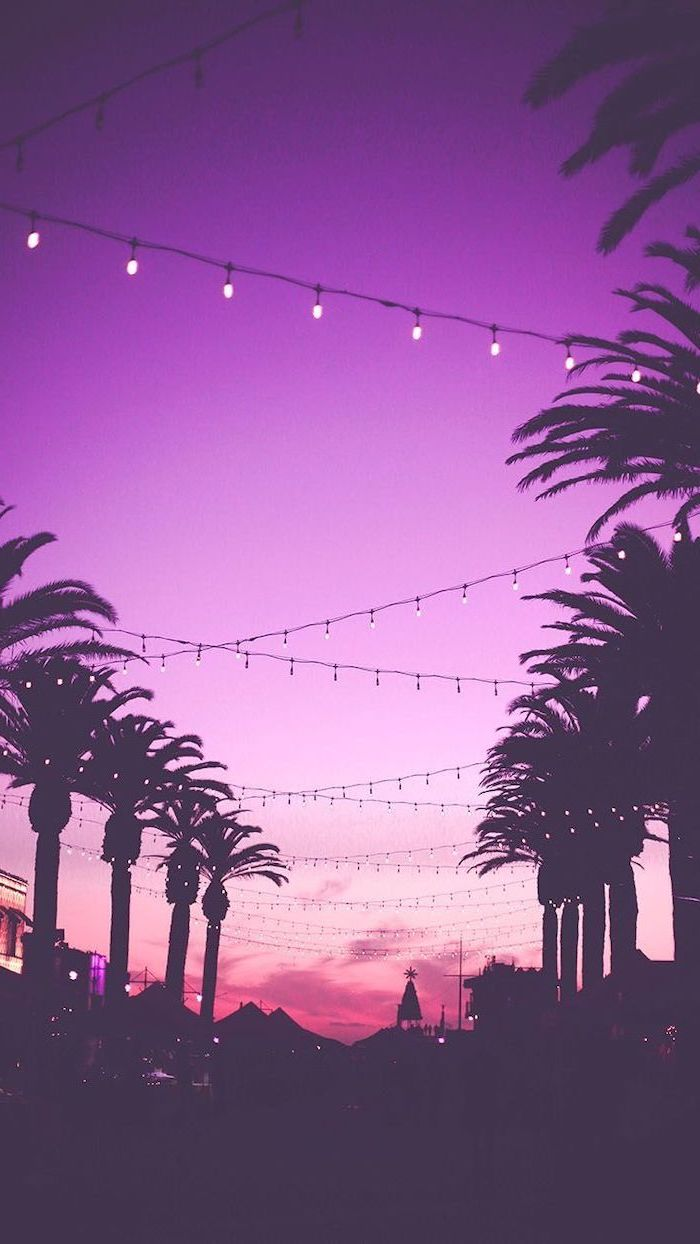 purple sky, sunset sky, cute wallpapers, string lights, tall palm trees