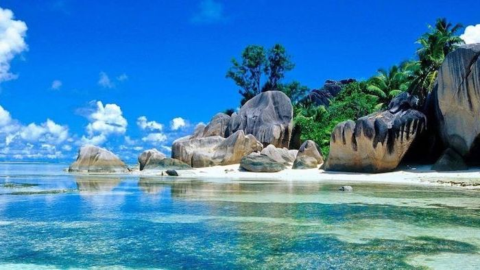 cute summer wallpapers, large rocks, by the water, tall palm trees, turquoise ocean water
