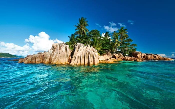 turquoise clear water, palm trees, on rocks, seychelles islands