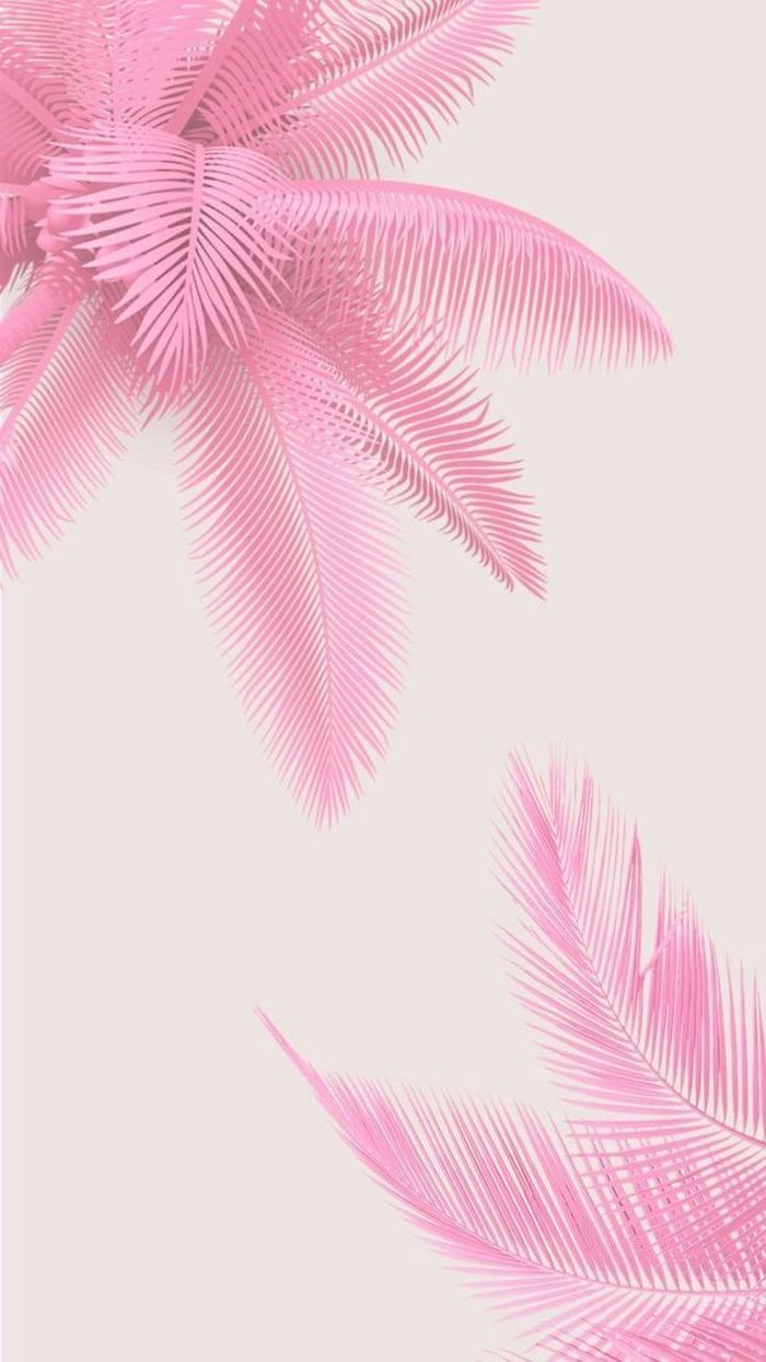 pink palm trees, cute lockscreens, white background