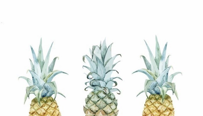 three pineapples, on white background, rose gold iphone wallpaper