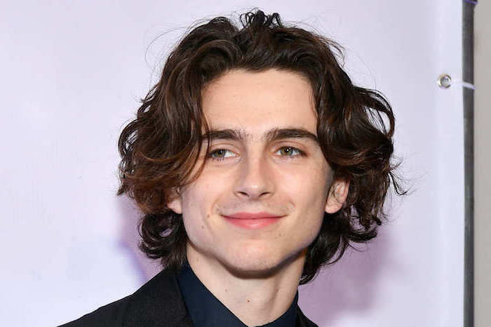 timothee chalamet, brown curly hair, green eyes, black blazer, purple background, cool hairstyles for men