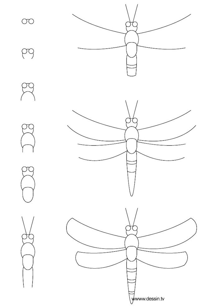 how to draw a dragonfly, black and white sketch, tracing pictures, step by step, diy tutorial