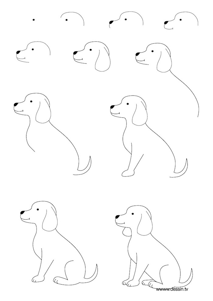 how to draw a dog, tracing pictures, black and white sketch, diy tutorial, step by step