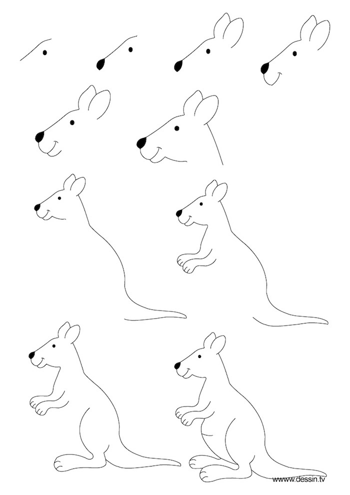 black and white sketch, things to trace, how to draw a kangaroo, step by step, diy tutorial