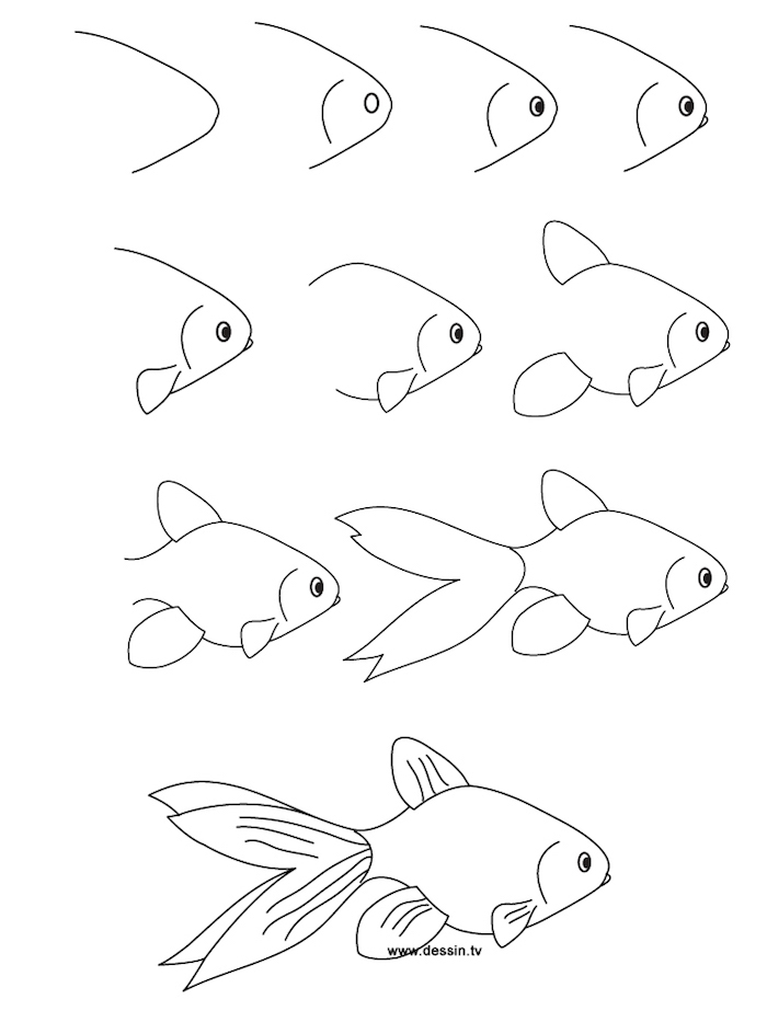 how to draw a koi fish, things to trace, step by step, diy tutorial, black and white sketch