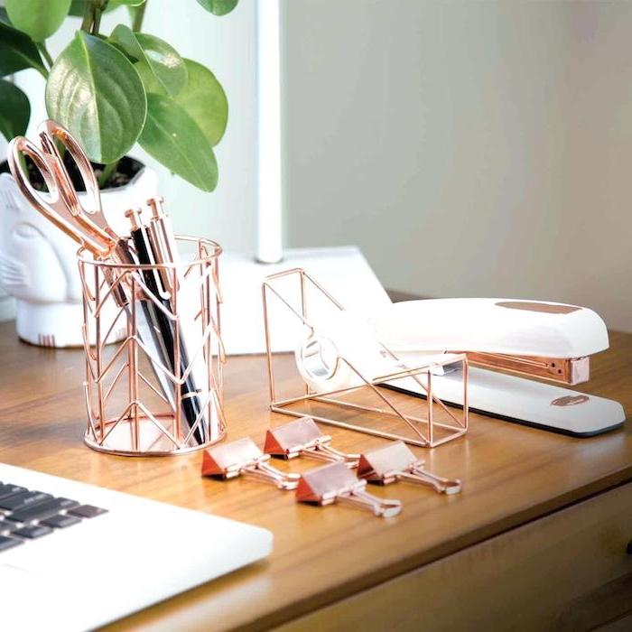 rose gold, desk accessories, cool office decor, wooden desk, potted plant