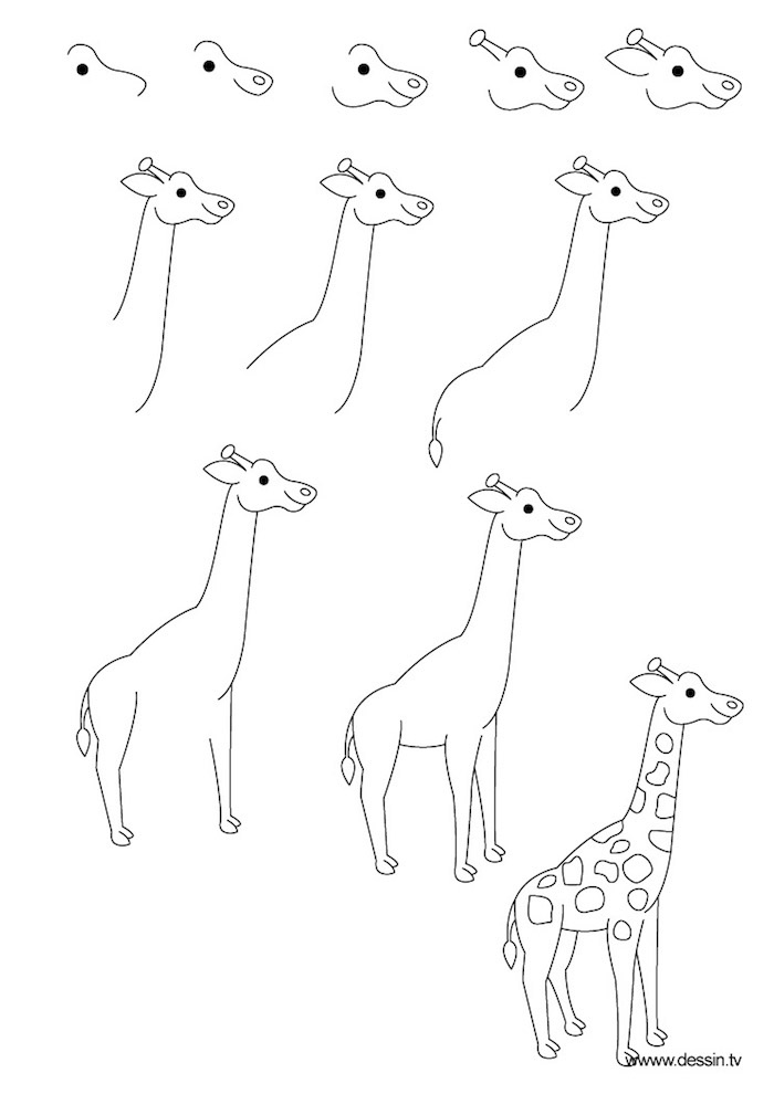 photo to line drawing, how to draw a giraffe, step by step, diy tutorial, black and white sketch