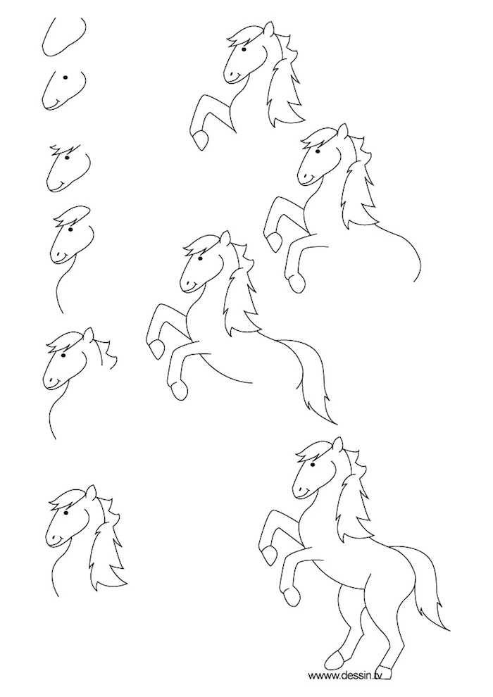 how to draw a horse, photo to line drawing, step by step, diy tutorial, black and white sketch