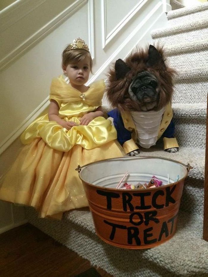 little girl dressed as belle, dog dressed as beast, beauty and the beast, halloween costumes for kids girl, trick or treat bucket