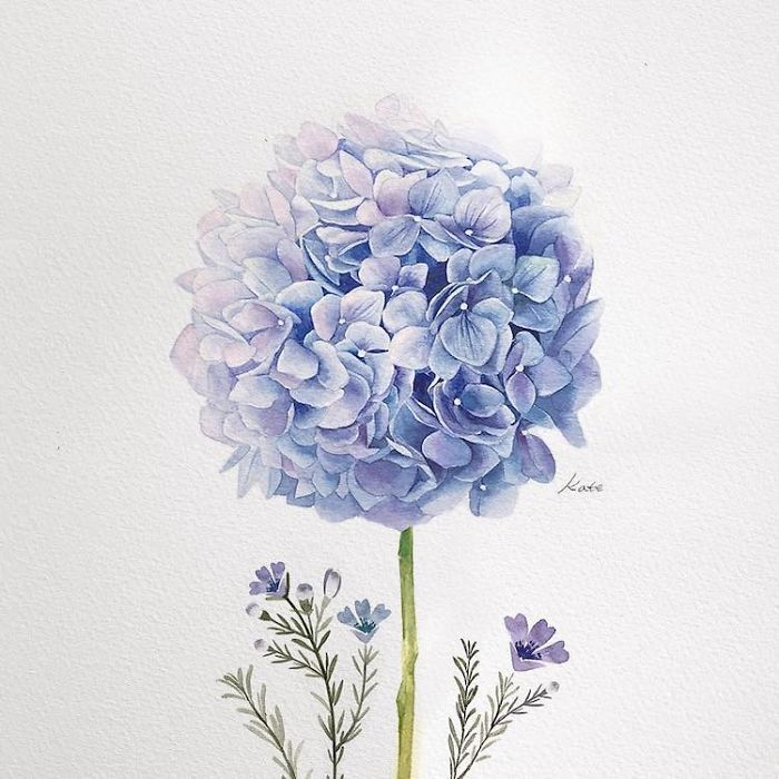 blue flower, white background, easy pictures to draw, watercolor painting