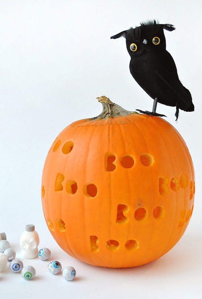 the words boo, carved into a pumpkin, plastic bird on top, jack o lantern designs, plastic eyes, white background