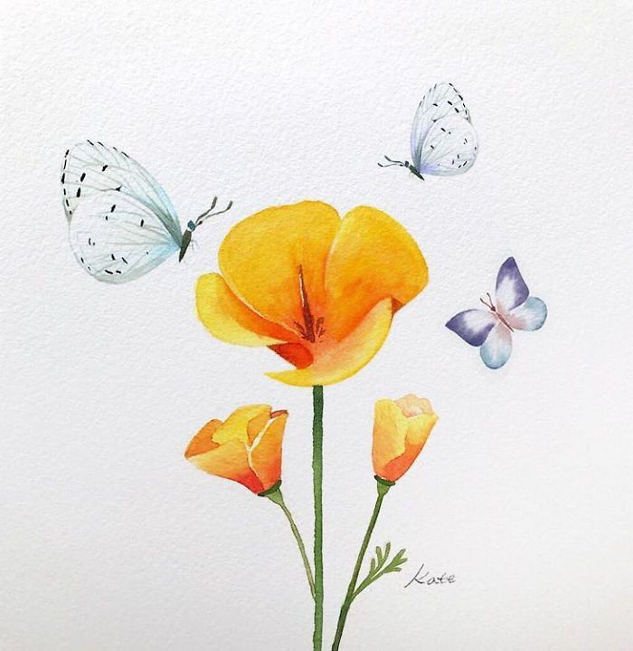 yellow flowers, surrounded by butterflies, on white background, rose drawing easy, watercolor painting