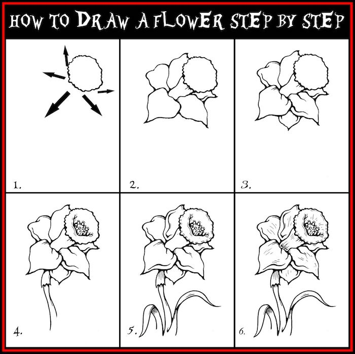 how to draw a flower step by step, diy tutorial, rose drawing step by step, white background