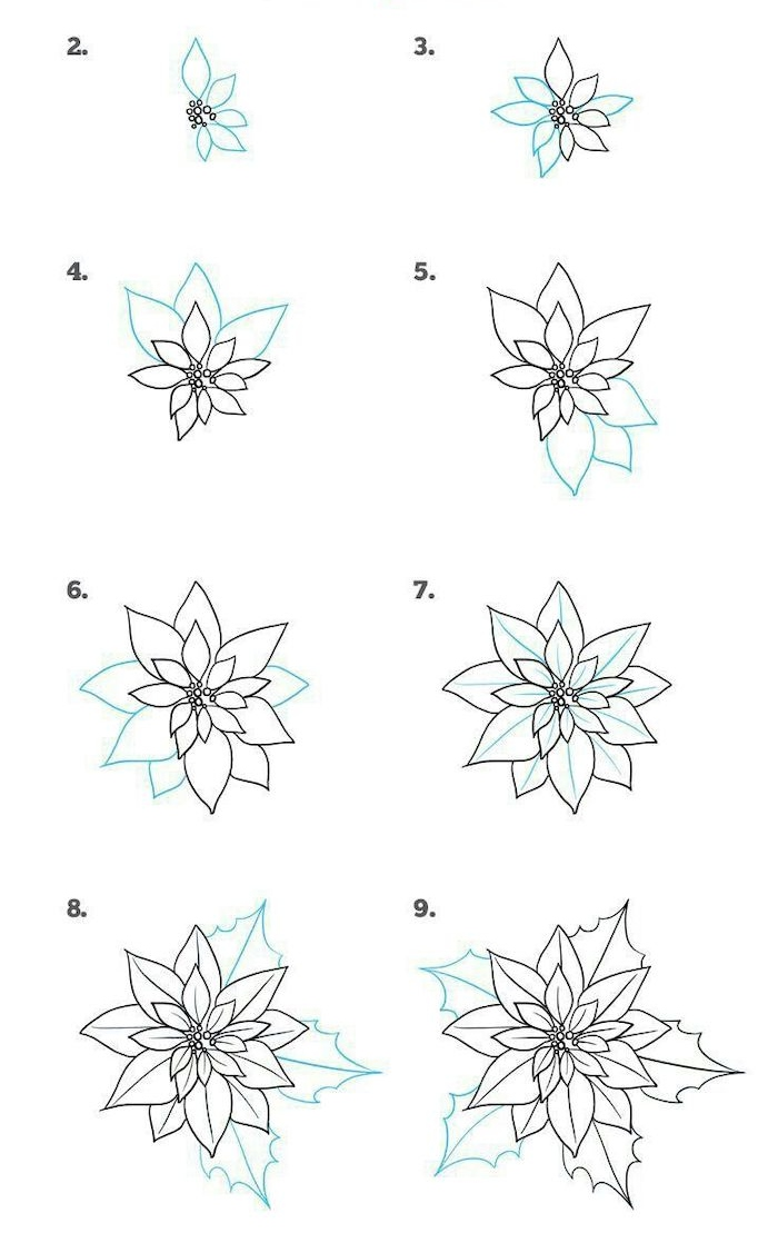 drawing pictures of flowers, how to draw a poinsettia, step by step, diy tutorial, white background