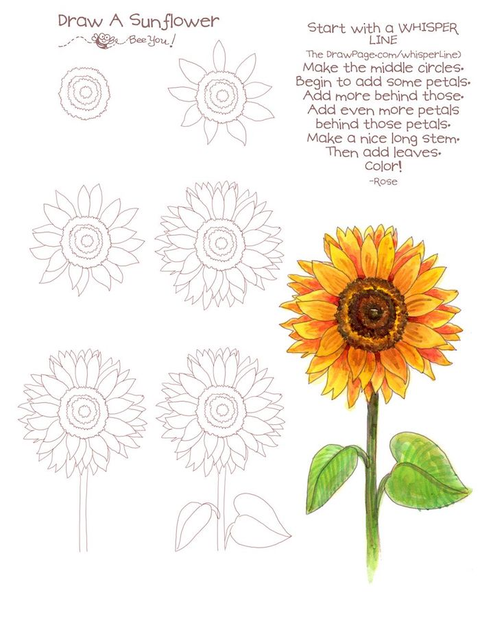 ▷ 1001 + ideas and tutorials for easy flowers to draw +