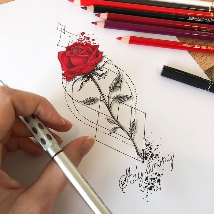red rose, stay strong, on white background, pictures of flowers to draw, hand holding a pencil