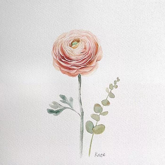 pink rose, watercolor painting, flower doodles, white background