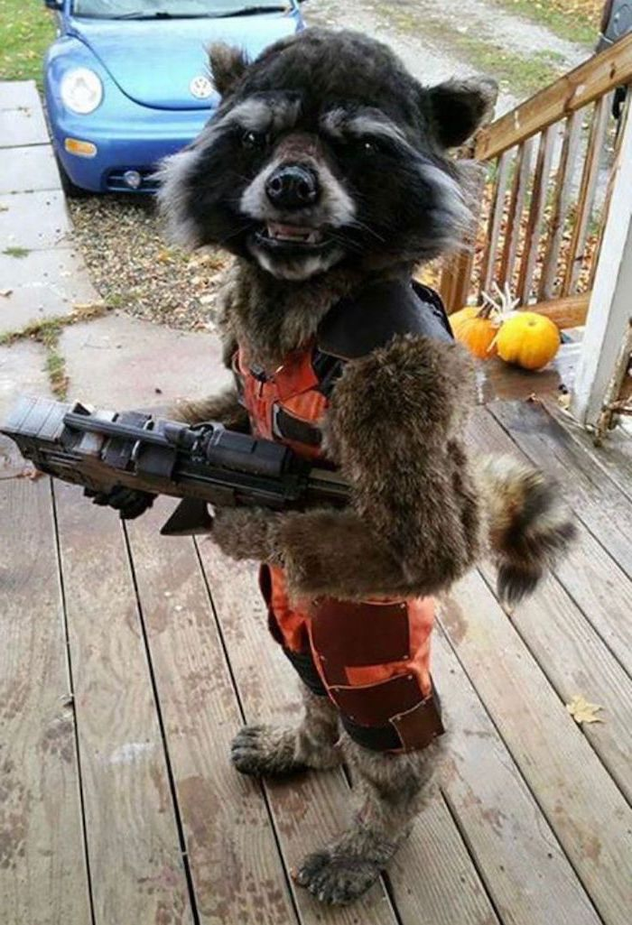 little boy, dressed as rocket, childrens halloween costumes, holding a gun, on the front porch