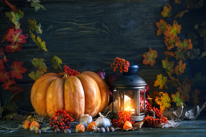 thanksgiving decorations, large pumpkin, candle lantern, black wooden wall, fall leaves, arranged on table