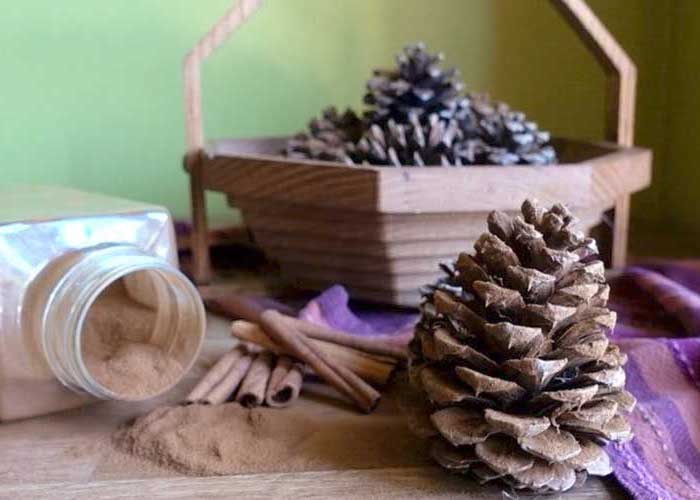 pine cones, in wooden basket, cinnamon powder, inside a jar, purple cloth, turkey decoration, cinnamon sticks
