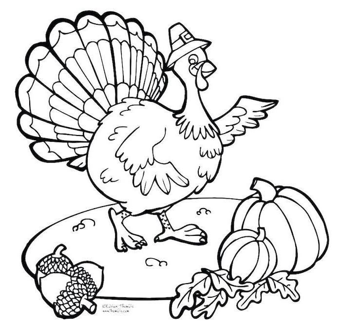 turkey with a hat, printable thanksgiving coloring pages, pumpkins and acorns, on the side