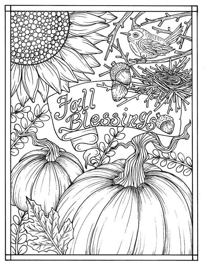 fall blessings, thanksgiving coloring pages, pumpkins and sunflowers, bird and acorns, black and white sketch
