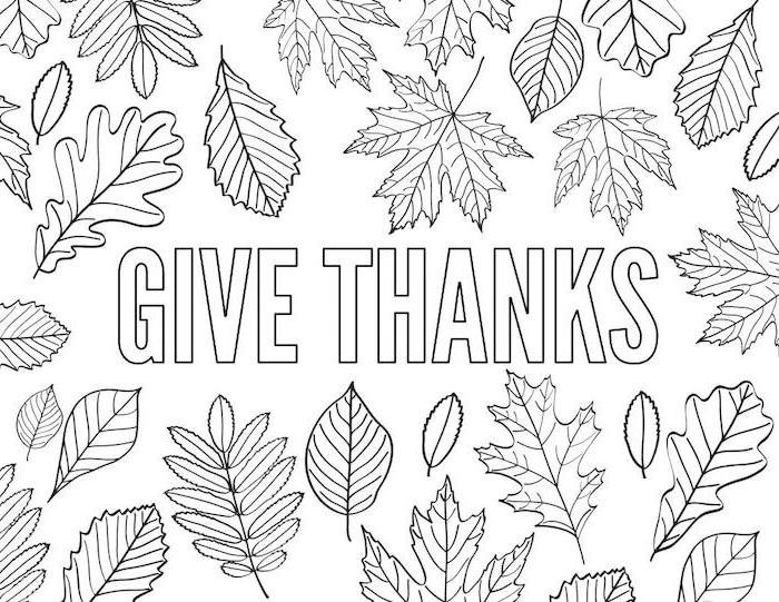 give thanks, black and white sketch, thanksgiving coloring pages, fall leaves