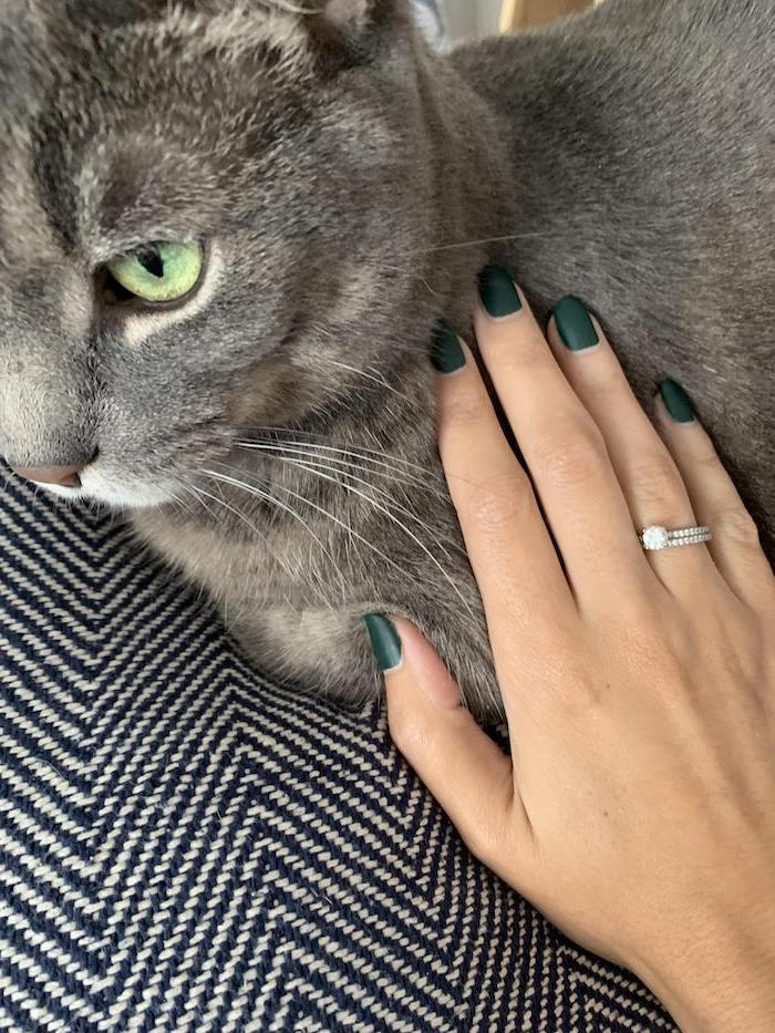 autumn nails, hand petting a grey cat, olive green, matte nail polish, engagement ring, squoval nails