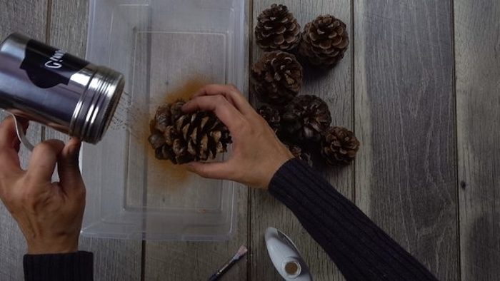 pine cones, covered with cinnamon powder, turkey decoration, in a plastic container, on wooden table, step by step, diy tutorial