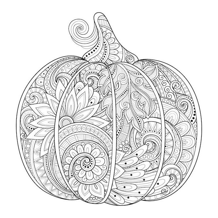 pumpkin with floral motifs, black and white sketch, turkey pictures to color