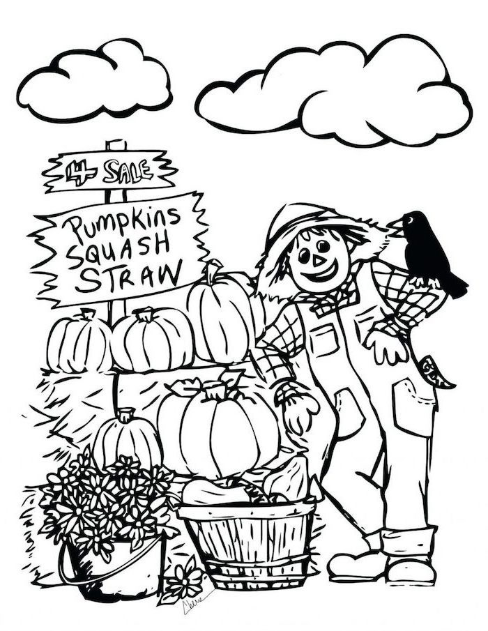 pumpkin squash straw, scarecrow and bird, selling pumpkins, thanksgiving pictures to color, black and white sketch