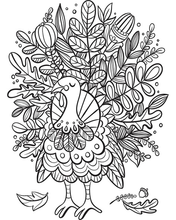 black and white sketch, thanksgiving pictures to color, turkey with floral motifs
