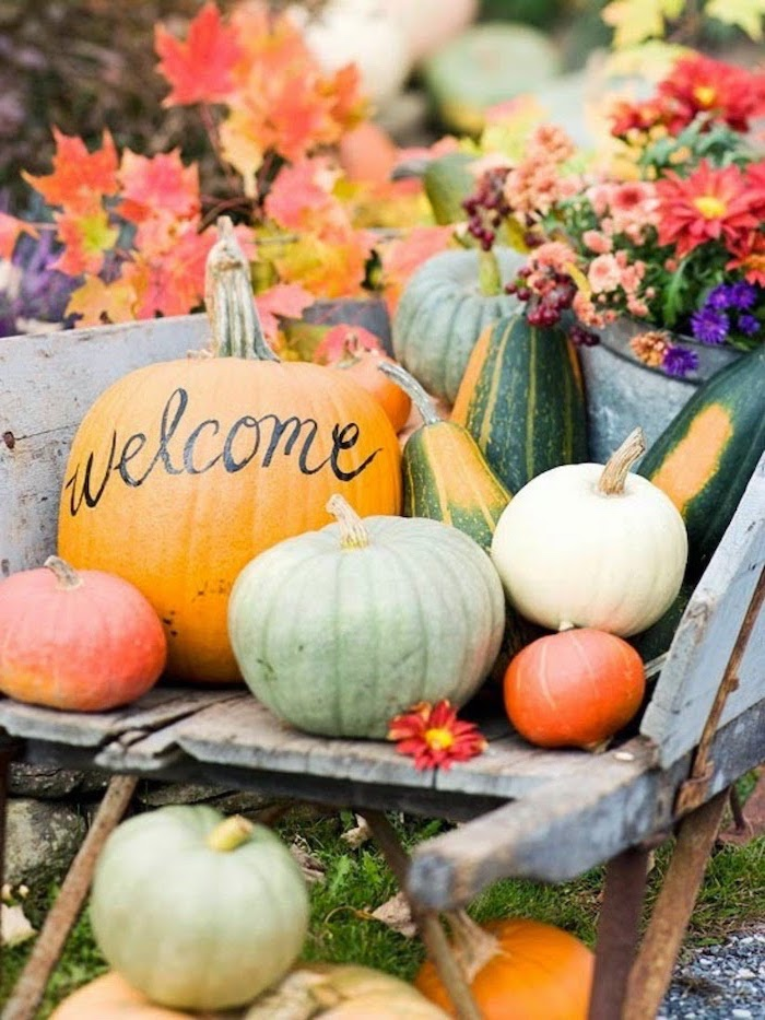 welcome written on pumpkin, pumpkins arranged in barrel, happy thanksgiving sign, flowers and fall leaves, in the background