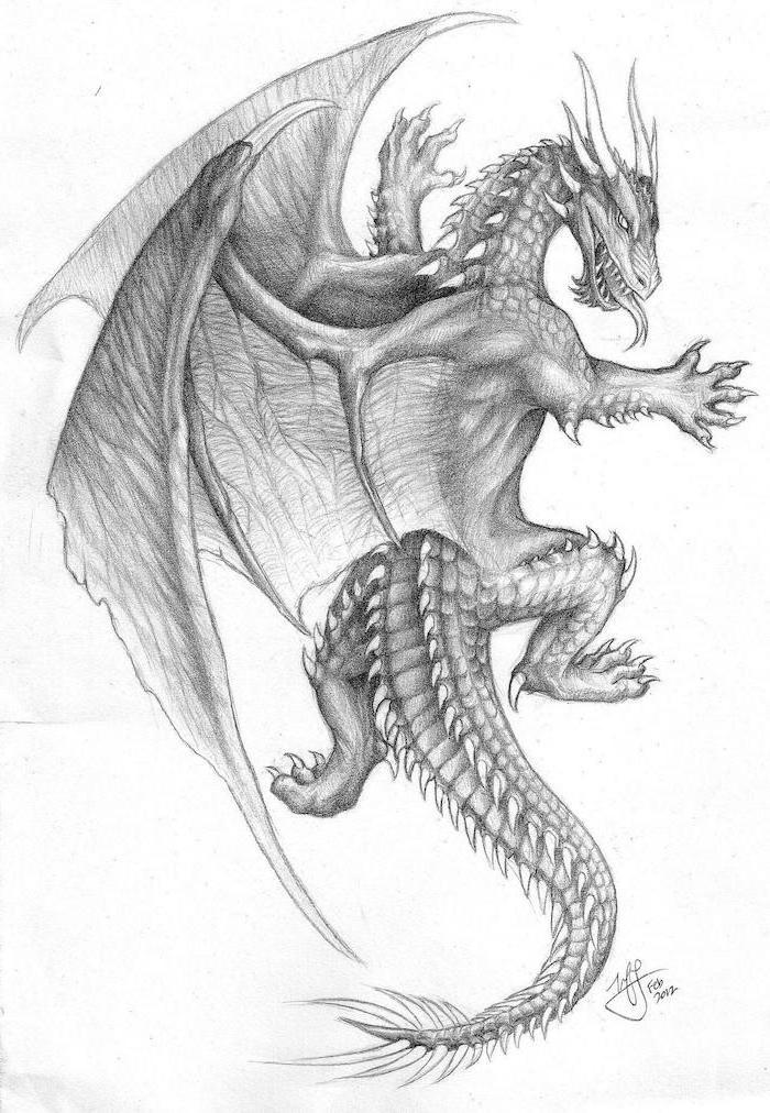 black and white pencil sketch, dragon back tattoo, white background, scary dragon