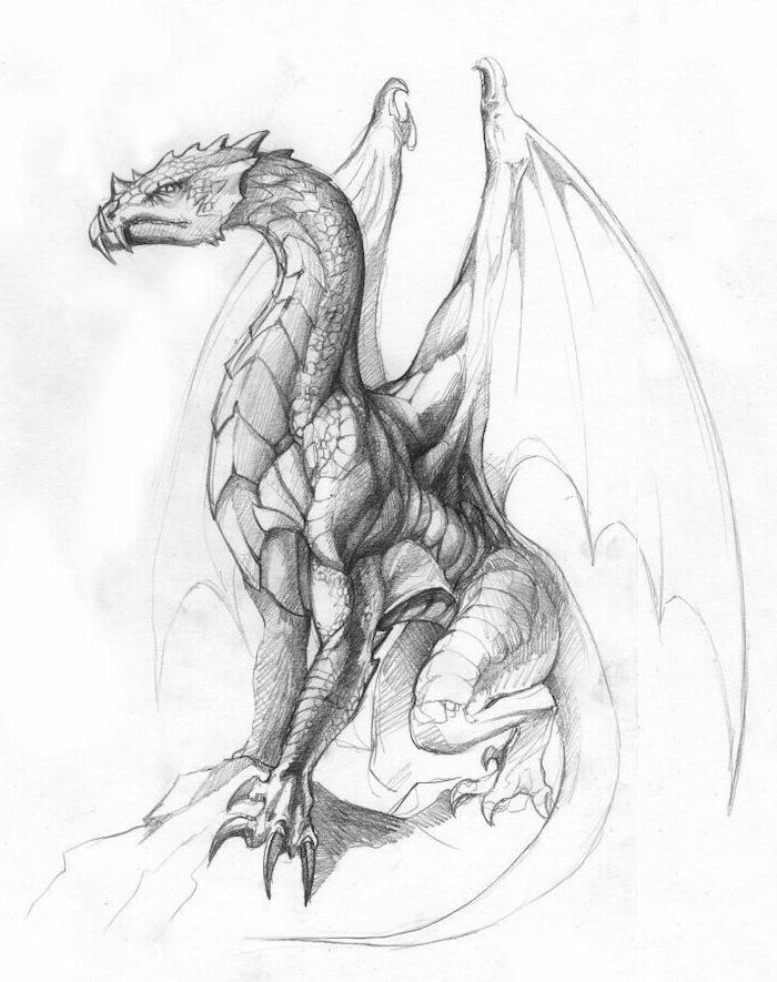 black and white pencil sketch, dragon sitting on a rock, dragon back tattoo, white background