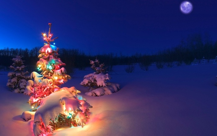 tree covered with snow, decorated with colorful lights, winter background, moon in the sky, snow covered ground